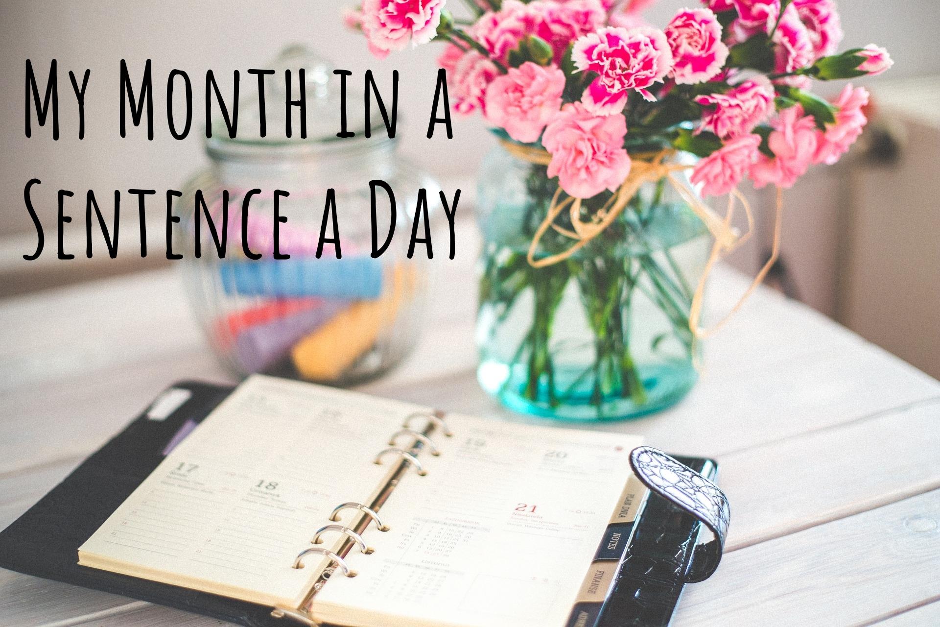 sentence a day.jpg