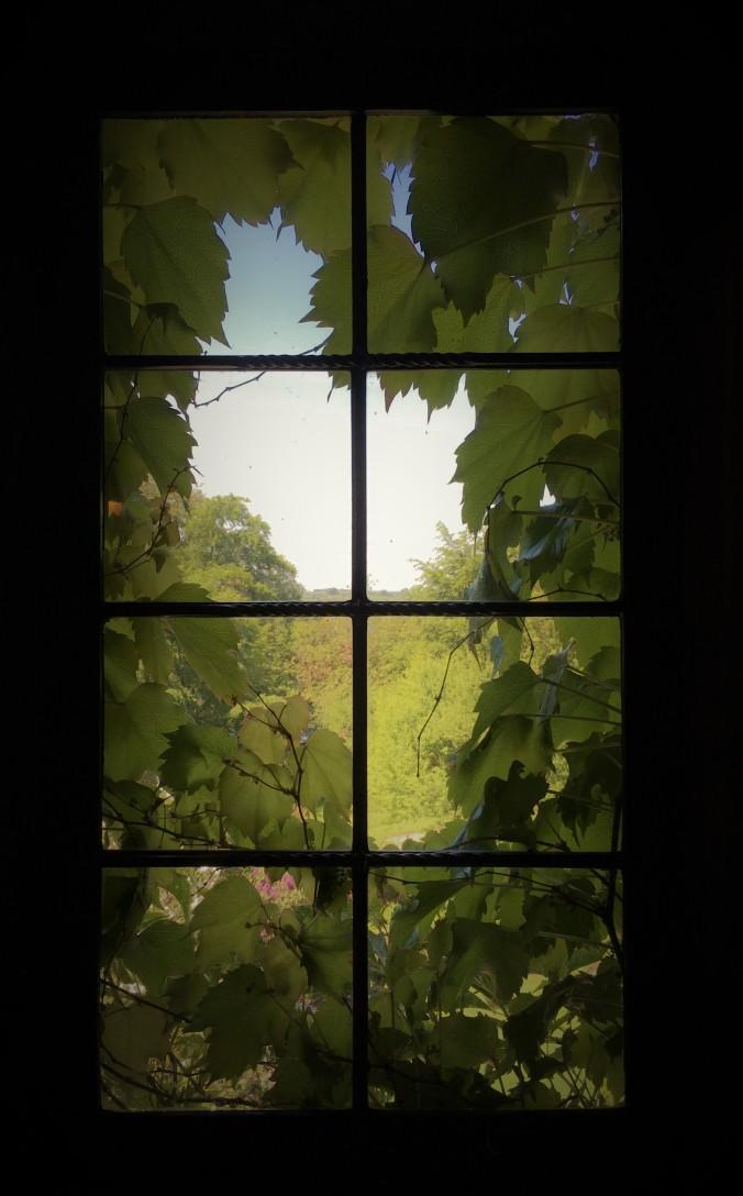 Mount Grace Priory Window